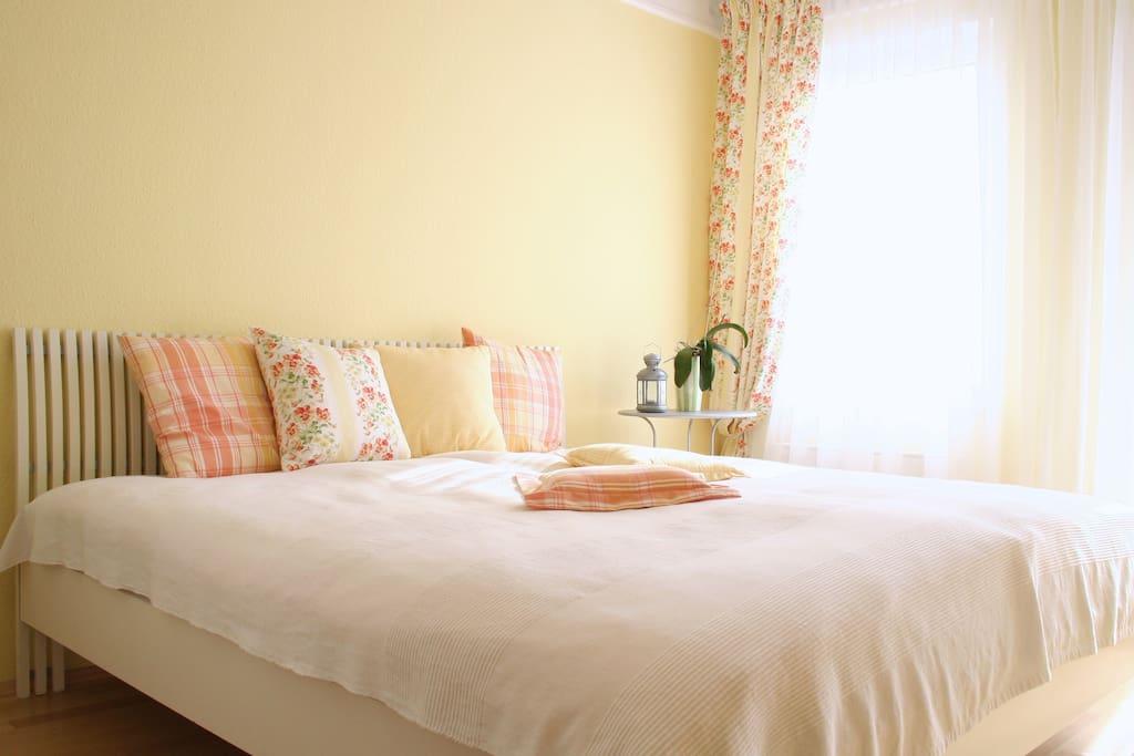 helle 2 zimmer wohnung n he uni wohnungen zur miete in dresden sachsen deutschland. Black Bedroom Furniture Sets. Home Design Ideas