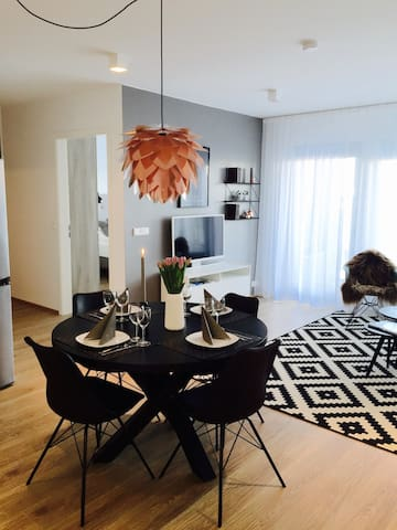 New downtown luxury apartment (103)