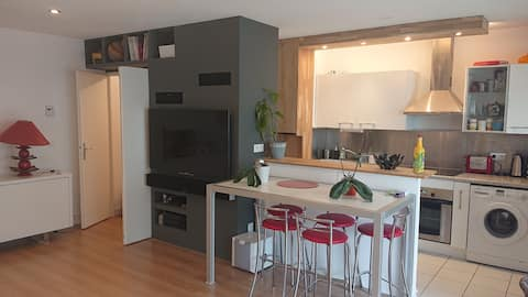 Appartement Lumineux 50m2 (T2)