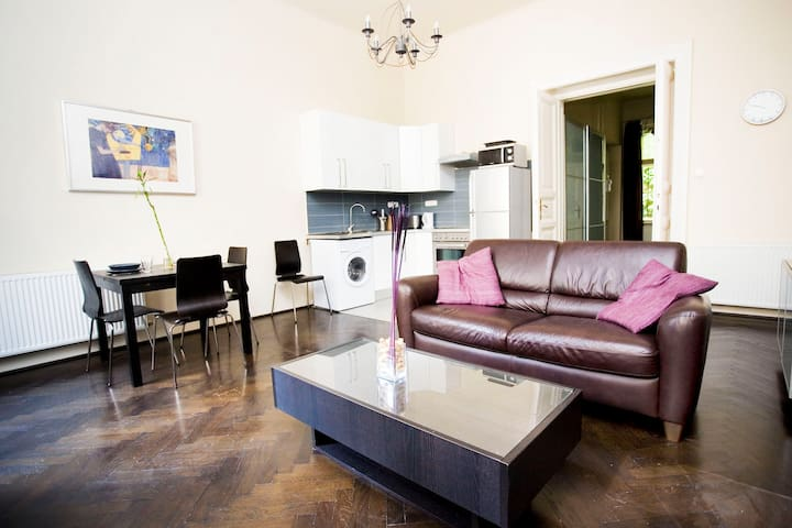 Spacious, modern in the old centre - Budapest - Apartemen