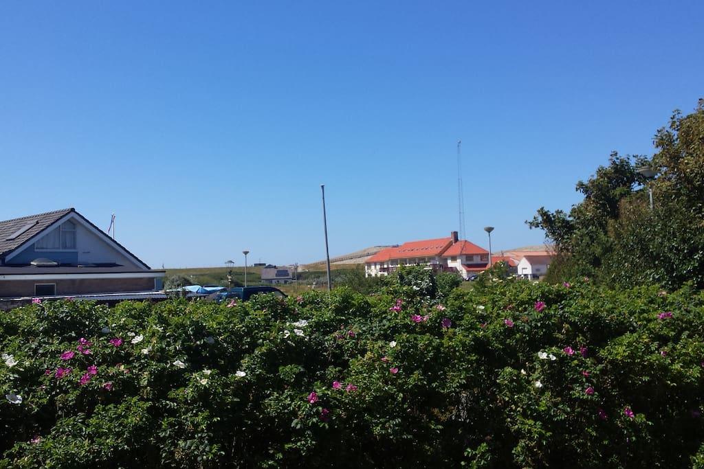 De vakantiewoning is zeer dichtbij de kust gelocaliseerd.
