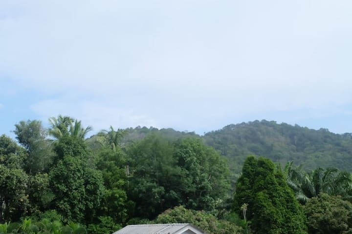 Jungle view from rear of your villa.