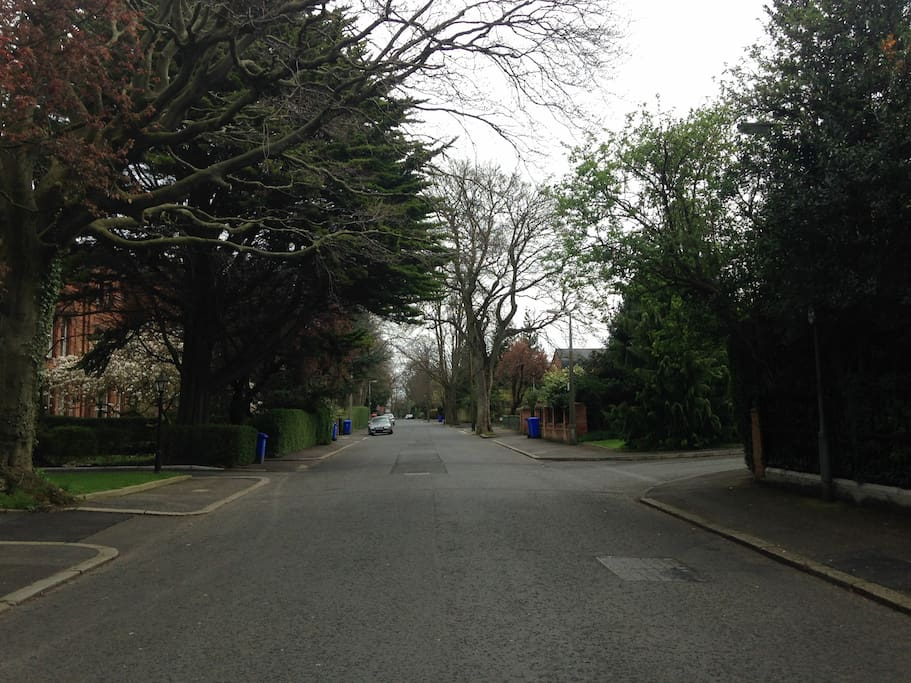 The quiet avenue where our apartment is situated