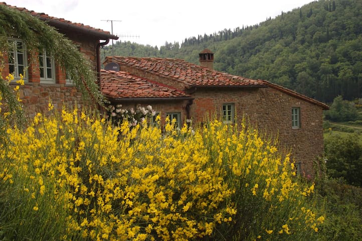 Ancient farm house in  Chianti  - Greve in Chianti - Haus