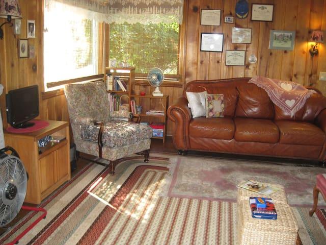Upper Cabin Living Room