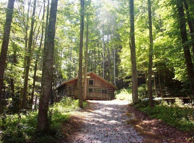 Cozy Cabin in Cherokee Ntl Forest - Cosby - Cabana