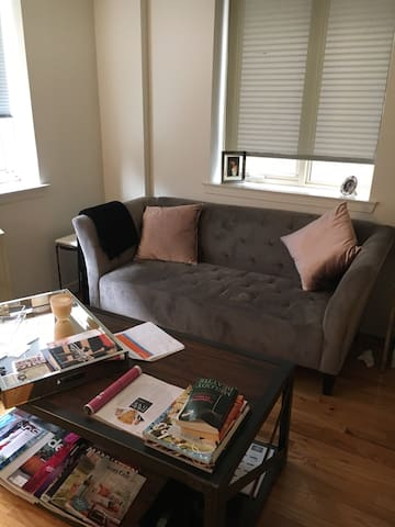 SPACIOUS STUDIO/APT in UPPER EAST - New York - Apartment
