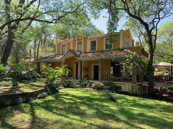 Casa entre árboles centenarios