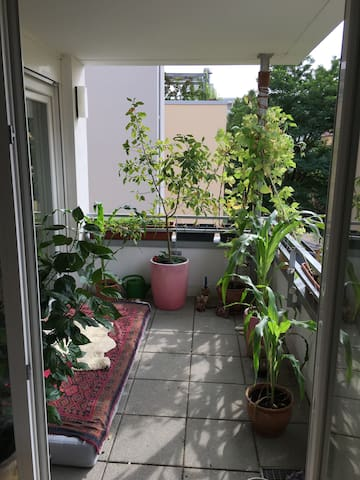 Beautiful appartment with own balcony and WI/FI