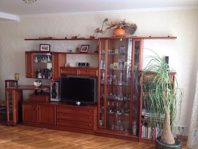 Однокомнатная квартира - Moskova