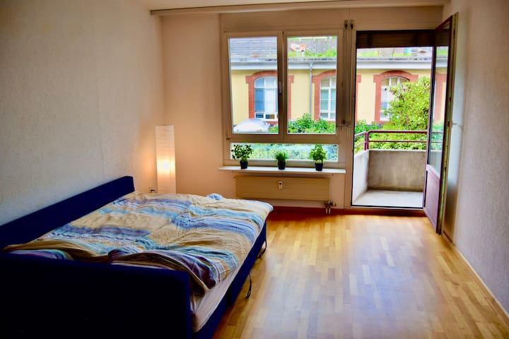 Spacious flat in Kleinbasel with nice balcony