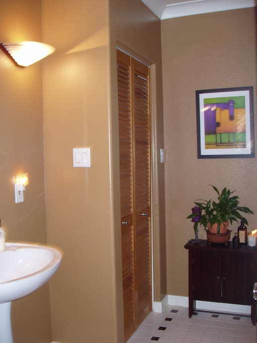 Shared guest bathroom (downstairs)