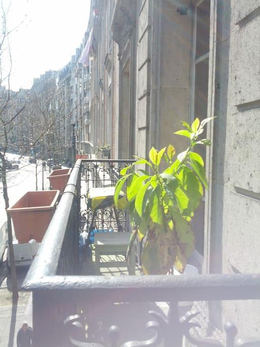 Small balcony, perfect for sunny mornings!
