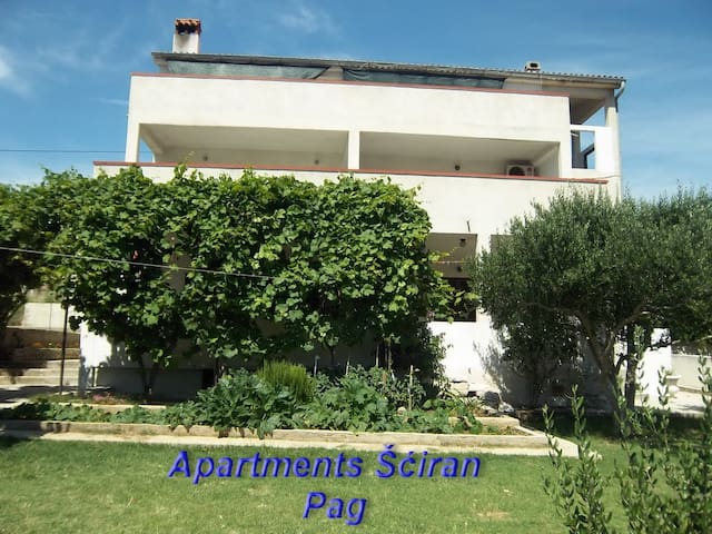 Apartman Šćiran Pag - Ap2 4+1 - Pag - Apartamento