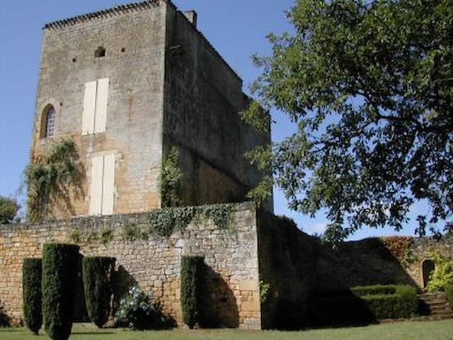 Superb Castle to rent in Périgord - Montferrand-du-Périgord - Castelo
