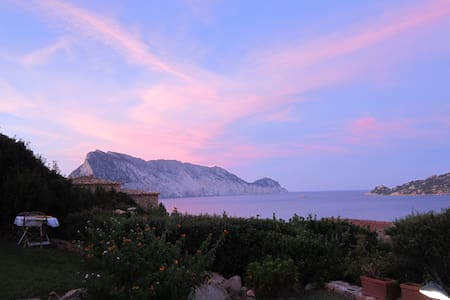 STUNNING  & BREATHLESS SEA VIEW! - Punta Molara, San Teodoro - 独立屋