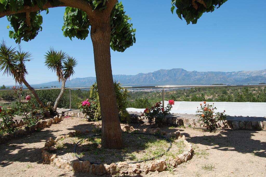 Jardin con Vistas de Tortosa y los Ports