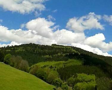 Ferienwohnung im Schwarzwald / Black Forest