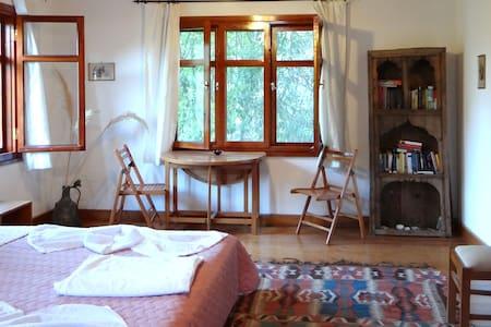 Family Room in mediterranean garden - Çıralı