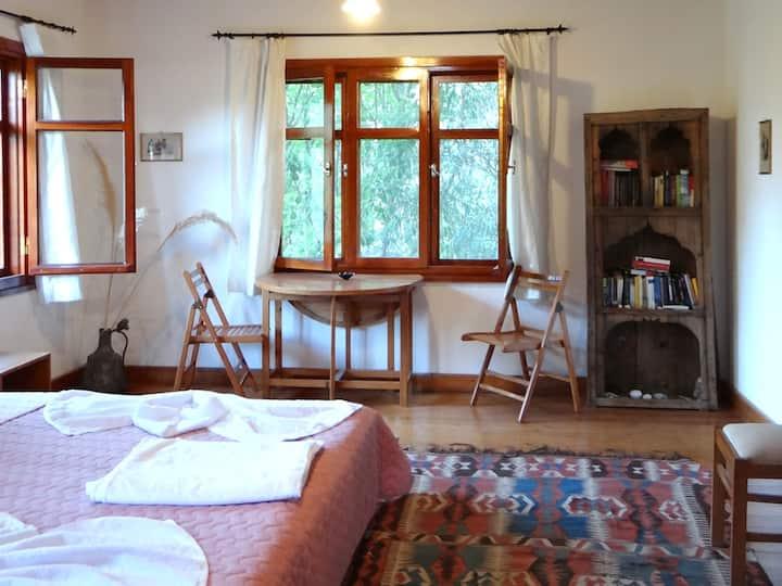 Family Room in mediterranean garden
