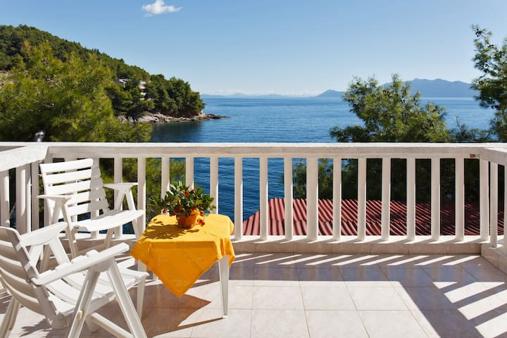 VILLA by the SEA - Island of Hvar - Gdinj - House