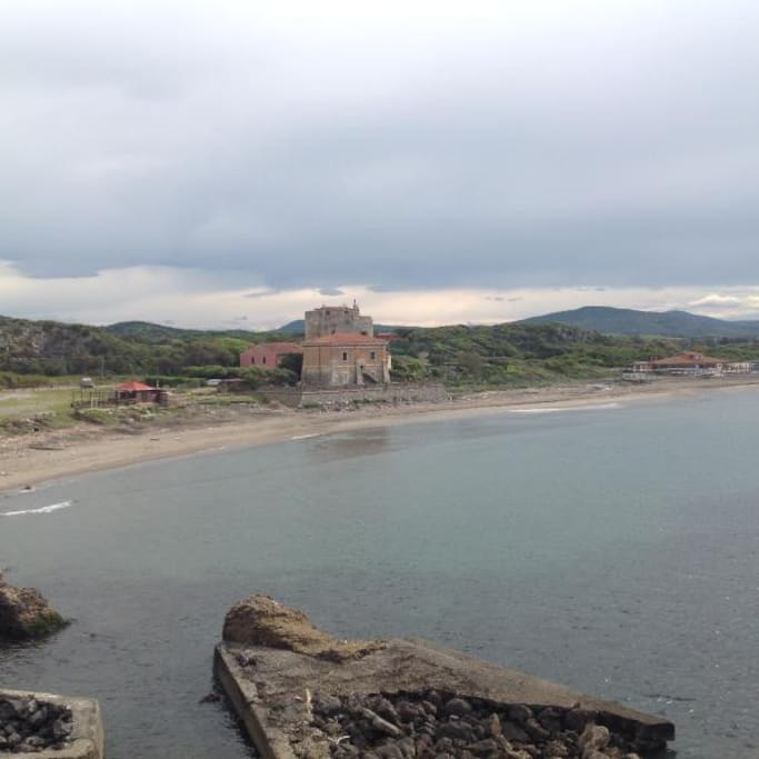 The Puccini Tower complex seen from the beach