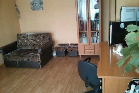 Уютная квартира  - Daugavpils - Appartement