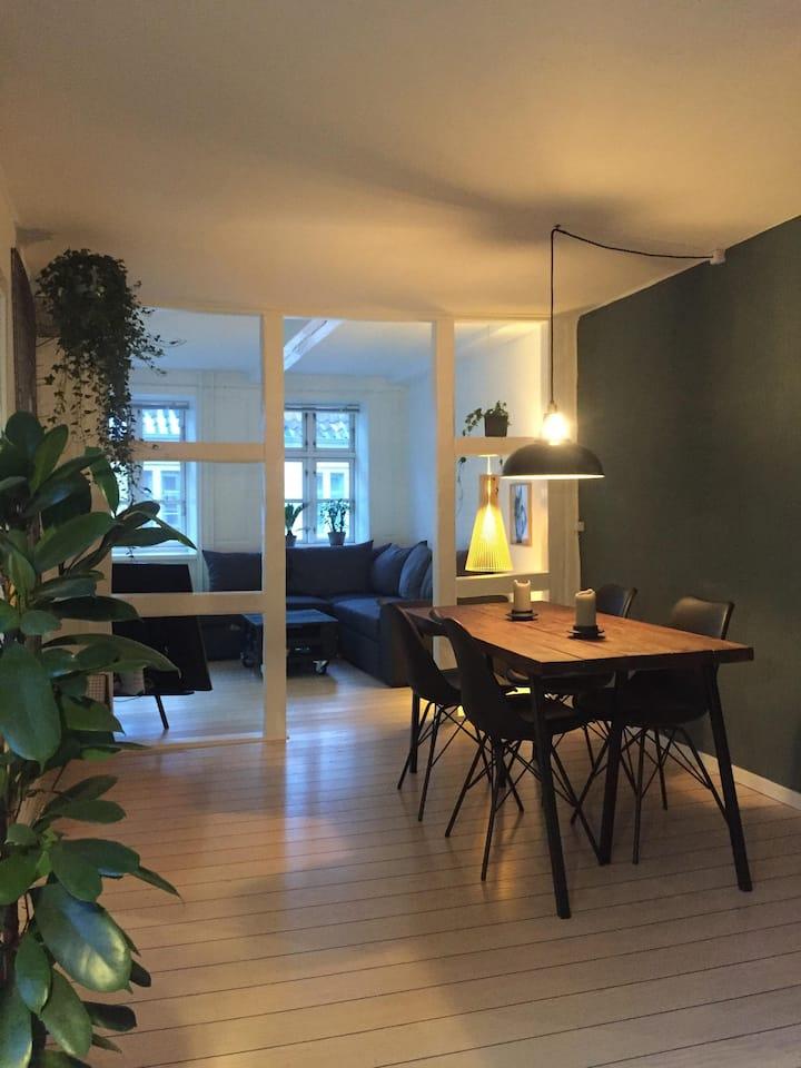 Apartment in the heart of Copenhagen Centrum