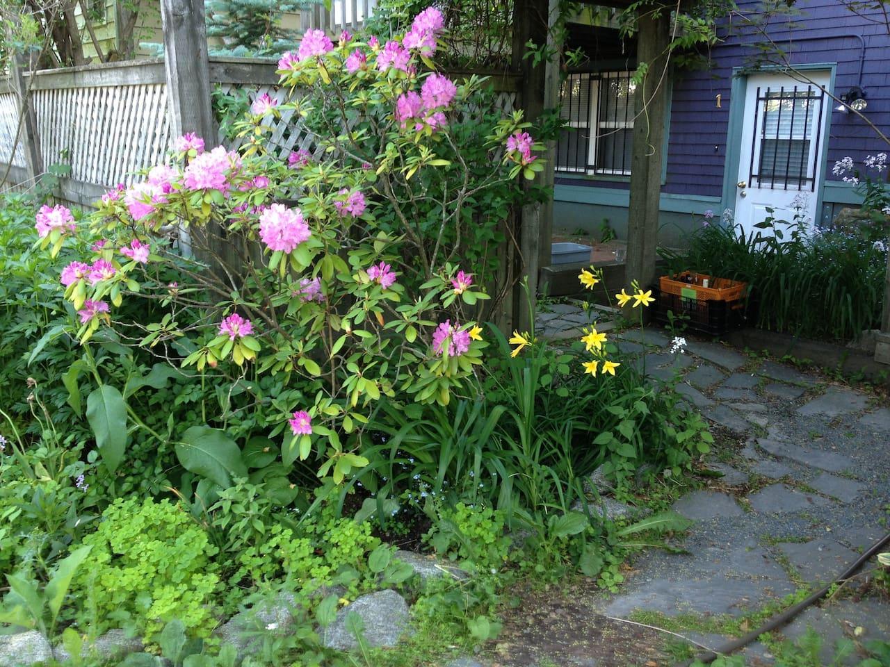 Apartment Door leads to large garden