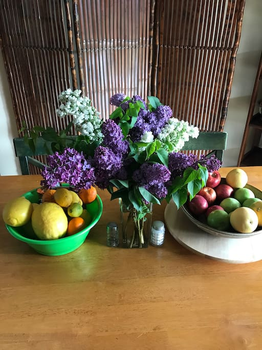 Fresh fruit and lilacs from Julian!