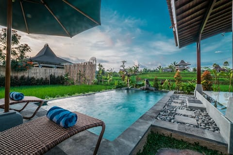 Boutique Bungalow, Private Pool w a view Near Ubud