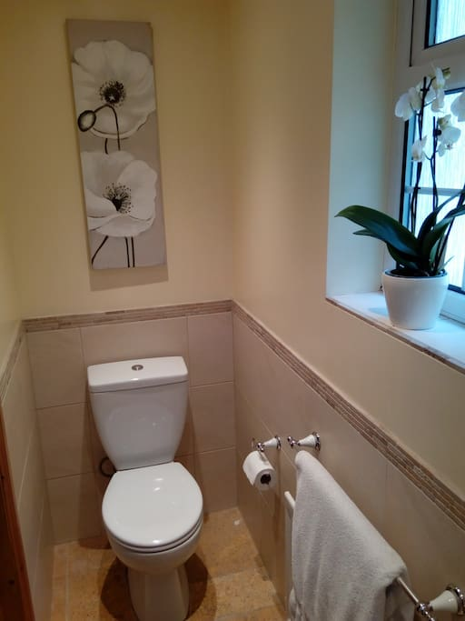 En suite for Bedroom 1, with toilet and shower