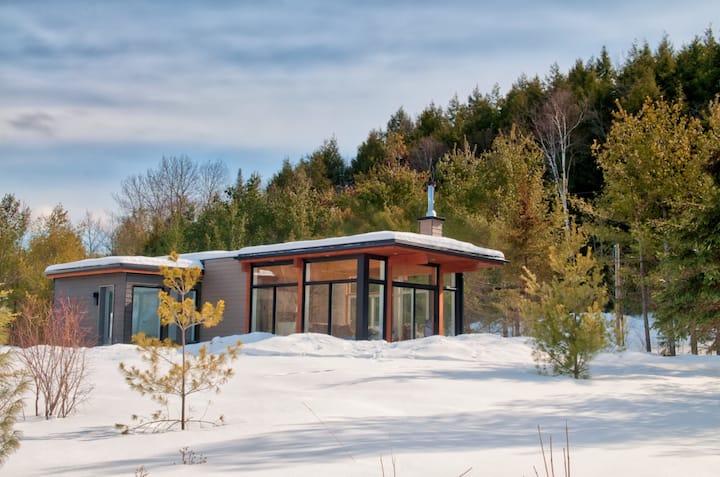 Modern Wakefield Cabin
