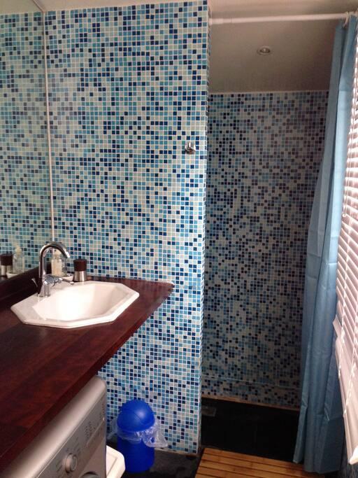 salle d eau de la chambre 1 (douche)