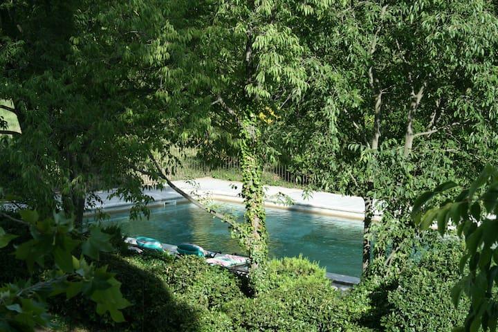 Le petit rougadou - Saint Rémy de Provence