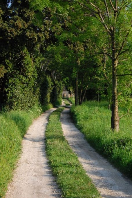 Le petit chemin de terre pour accéder au mas.