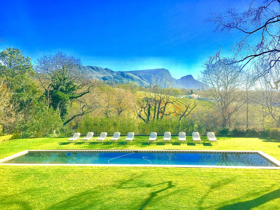 19m pool with View of Groot Constantia Vineyards
