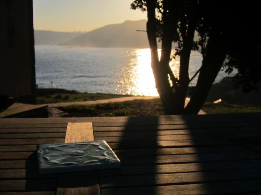 (Blue Garden)_Sun rise