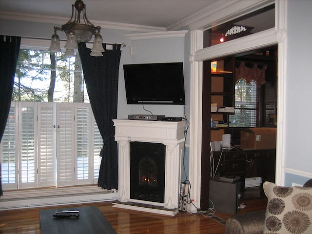 Salon avec foyer au gaz et divan-lit