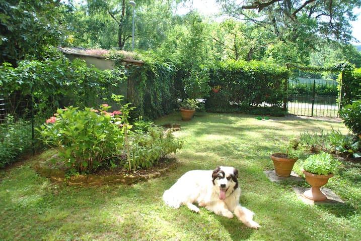 """""""Il Cedro"""", appartamento con giardino, campagna"""