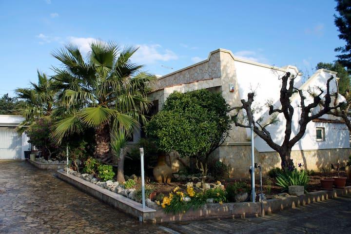 Mediterranean House - Torretta