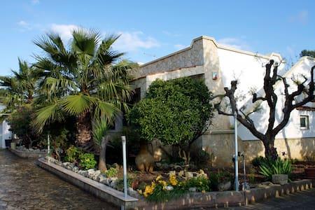 Mediterranean House - Villa