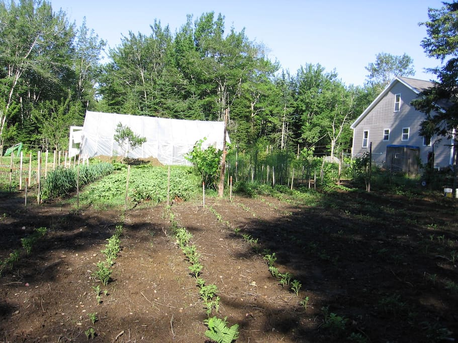 We have a large garden and composting operation, keep bees, and heat with wood in the winter.