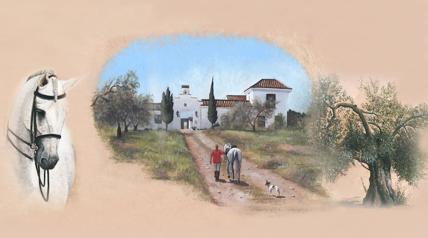 Escapada Rural en Doñana - Aznalcázar - Casa