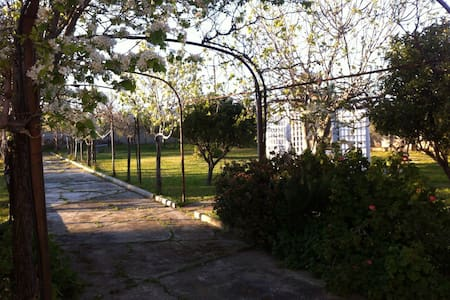 Lovely home with garden 5min to sea - Sant'isidoro - Haus