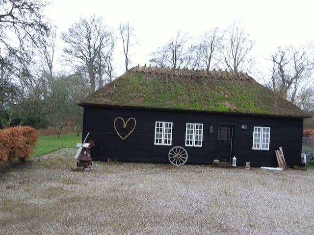 Skønt hus 50 meter fra skoven - Faxe - Treehouse