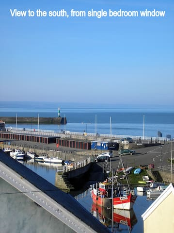 Harbour view 3 room top floor flat - Aberystwyth - Apartment