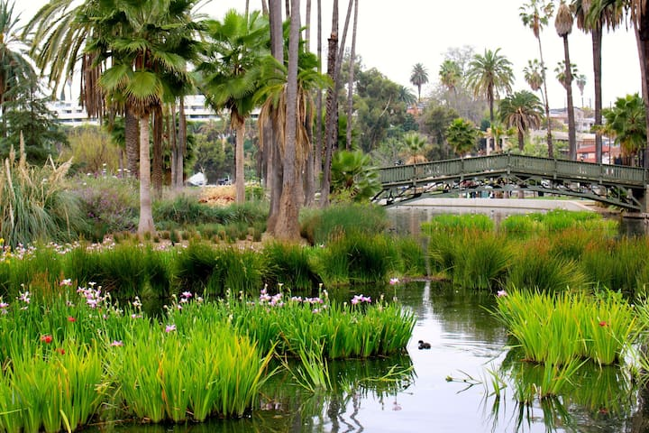 Echo Park Lake, 3 blocks away. Perfect for a picnic, a stroll around the lake, or some fun on a pedal-boat!