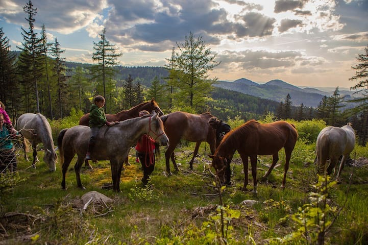 Horses & peace of mind in the mountains. - Janowice Wielkie - Casa