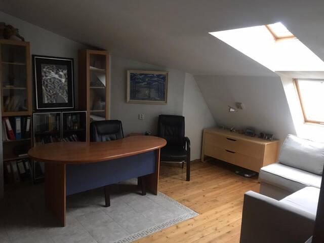 Оne-bedroom apartment in the city center